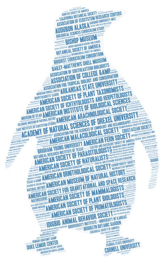 A word cloud in the shape of a penguin and containing AIBS member society names