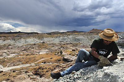 Paleontologist Takehito 'Ike' Ikejiri looks for vertebrate fossils as a late summer thunderstorm looms in the distance. The colorful exposures are mainly from the Late Jurassic Morrison Formation of western Colorado, approximately 150 million years old. While the Jurassic was dominated by dinosaurs, it was also an important well-spring for many modern taxa, including mammals. Ike was part of a field expedition that spent all summer dodging the big, charismatic dinosaur fossils in favor of focusing on the small vertebrates that evolved to define our landscape today. Credit: Juri Miyamae